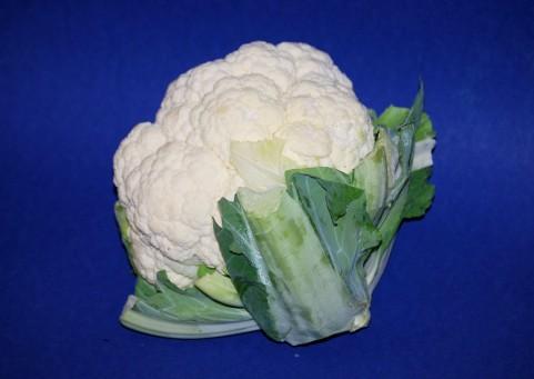 kaleflower1