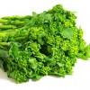 菜の花の保存方法や選び方のコツ!菜の花の栄養と効能は何?