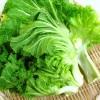 高菜の栄養と効能は何?保存方法や選び方のコツ!