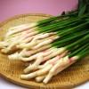 葉生姜の保存方法や選び方のコツ!栄養と効能は何?